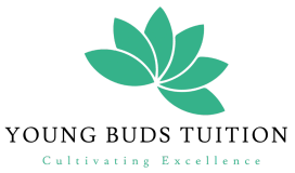 Young Buds Tuition