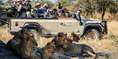 Private Luxury Safari Botswana