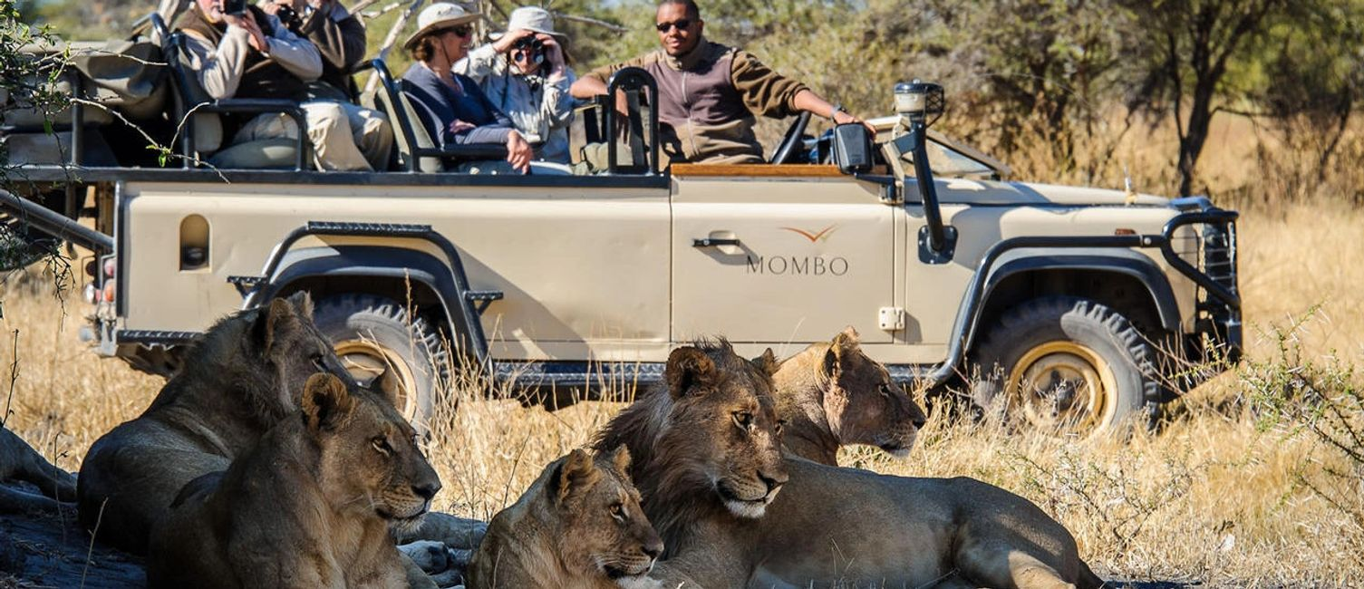 Private Luxury Botswana Safari. Experience an unforgettable Safari in Botswana's pristine wilderness