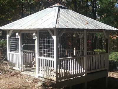 Socializing gazebo at Another Chance Rescue
