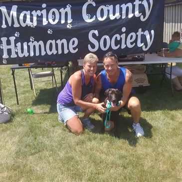 marioncountyhumane org - Humane Society - Knoxville, Iowa