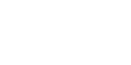 PERCEPTION  by Anna Dickinson