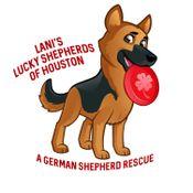 Lani's Lucky Shepherds of Houston - A German Shepherd Rescue