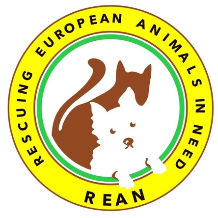 Rean -  rescuing european animals in need