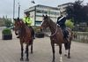 GMP Mounted Branch were very much in evidence at the show.  Here we have two officers, one in everyday uniform and the other in ceremonial dress.