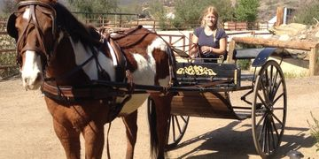 CARRIAGE RENTALS for Horses for Production in Los Angeles, CA