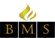 Business management services llc