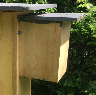 Fabrication daube ruche kenyane  - Page 2 Rs=w:388,h:194,m,cg:true