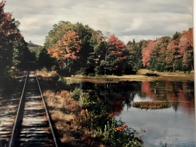 Marking wetlands along the Adirondack Scenic Railroad (1994).