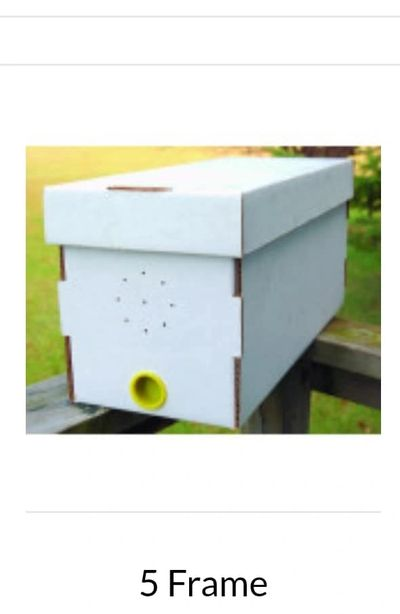 Nucs  consist of 5 Deep Frames ,drawn comb with brood pollen and honey,   Worker bees and a Queen,