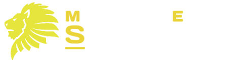 Global Marketing Empire Solutions