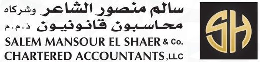 Salem Elshaer Auditing & Accounting