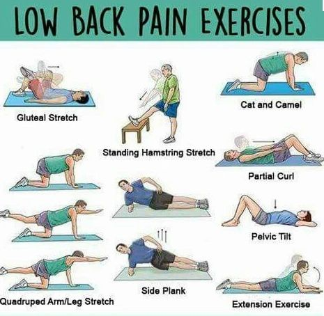 Lower Back At-Home Exercises