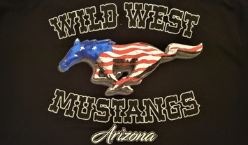 Wild West Mustangs and Fords, Arizona