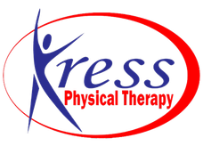 Kress Physical Therapy