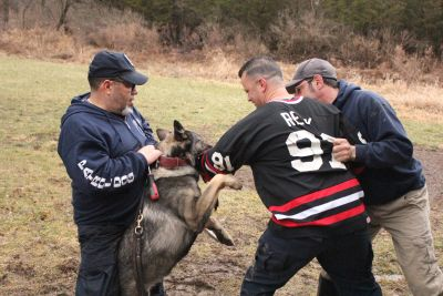 K9 Unlimited Police Decoy Training