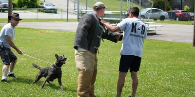 K9 Unlimited Decoy Training