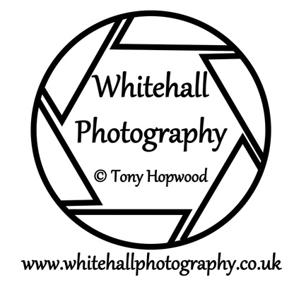 Whitehall Photography