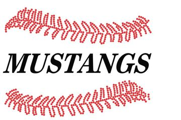 Mustangs with baseball Stitches