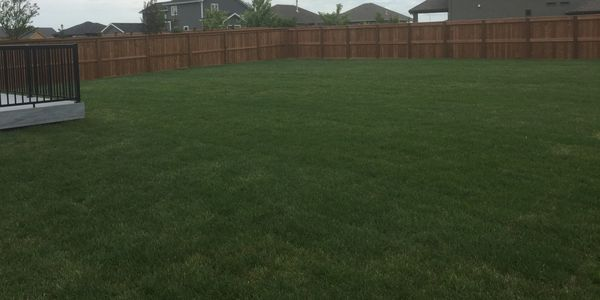 Sod Installation in Winnipeg. Winnipeg Landscaping consultant. residential and commercial landscape.