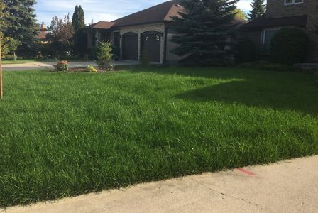 Sod Winnipeg. Landscaping in Winnipeg Sod Installation Service. Soil, mulch, grading and landscaping