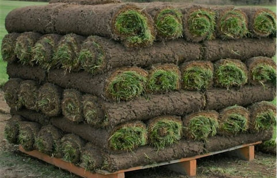 Sod in Winnipeg. Winnipeg sod installation at it's finest with premium soil, fertilizer and prep.