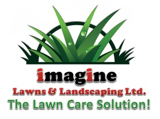 Sod Installation in Winnipeg - Imagine Lawns & Landscaping Ltd.