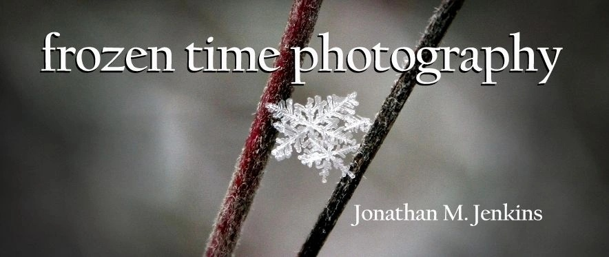Frozen Time Photography