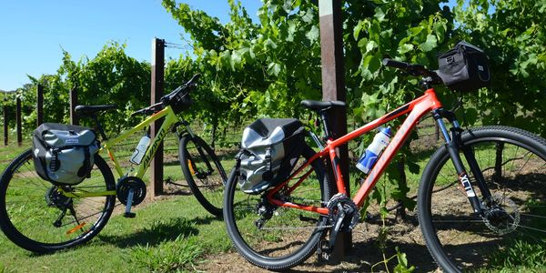 Gourmet-food-winery-cycle-tour