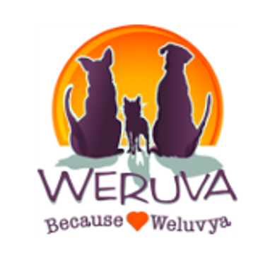 Weruva wet Cat canned Food