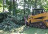 Shrub and Tree Removal