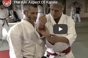 The Aiki Aspect of Karate
