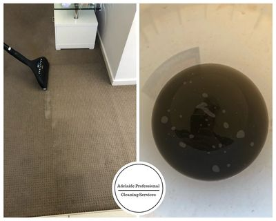 Take a look at the rinse water extracted from the carpets after steam cleaning.