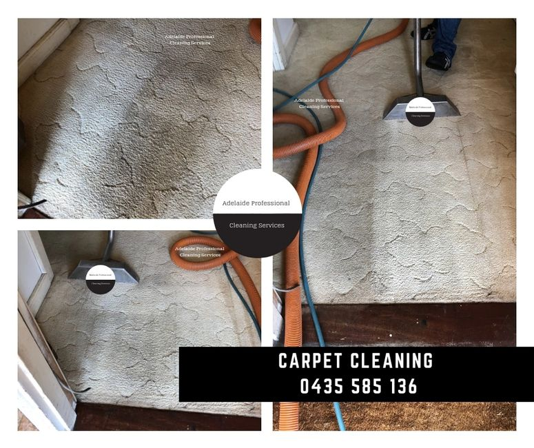 Carpet Cleaning services by Adelaide ProfessionalCleaning Services. Adelaide's best carpet cleaners!