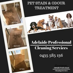 Adelaide Professional Cleaning Services specialise in Pet Stain & Odour Treatment Services. Call 0435 585 136