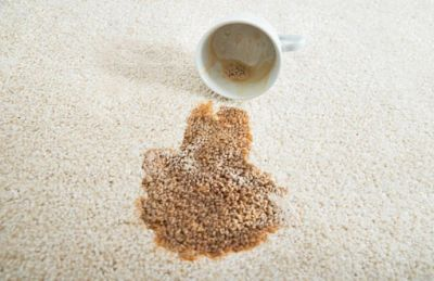 Carpet Stain Removal Adelaide. Adelaide Professional Cleaning Services specialise in Carpet Stain Removal and Treatment