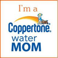 Copperton Water Mom Blog Button