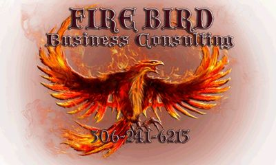 Firebird Business Consulting Ltd. servicing Saskatoon, Regina, Prince Albert, Humboldt, Saskatchewan