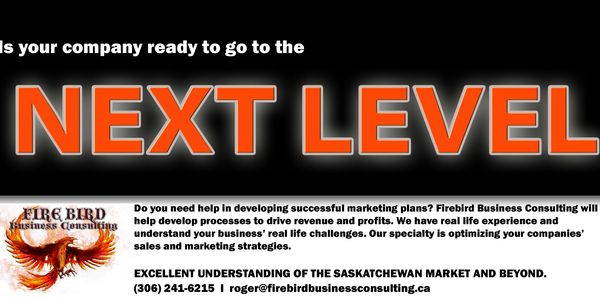 Next Level Business Solutions - Firebird Business Consulting - Business Consultant - Saskatoon