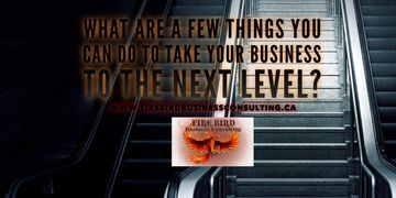 What are a few things you can do to take your business to the next level - Firebird Consulting Sask