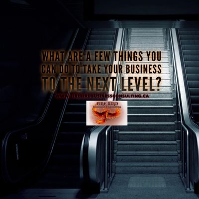 What you can do to take your business to the next level? - Firebird Business Consulating Saskatoon