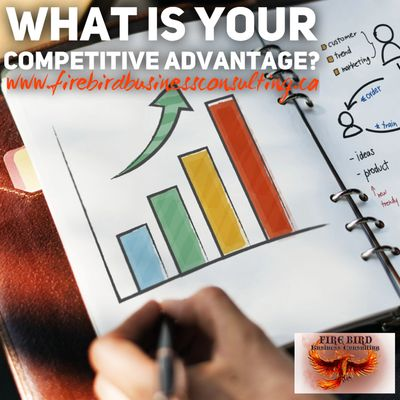 What is your competitive advantage? - Firebird Businenss Consulting Ltd. - Saskatoon - Sask - Canada