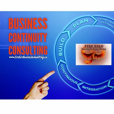 Business Continuity Consulting Services - Risk Management Consulting - Firebird Business Consulting