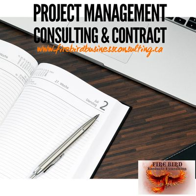Contract Project Management – Project Management Consulting - Firebird Business Consulting Ltd. - Sk