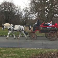 Horse drawn wagon for rides during the holiday season