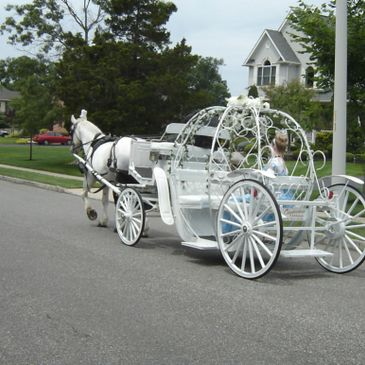 Cinderella Carriages for any type of event.