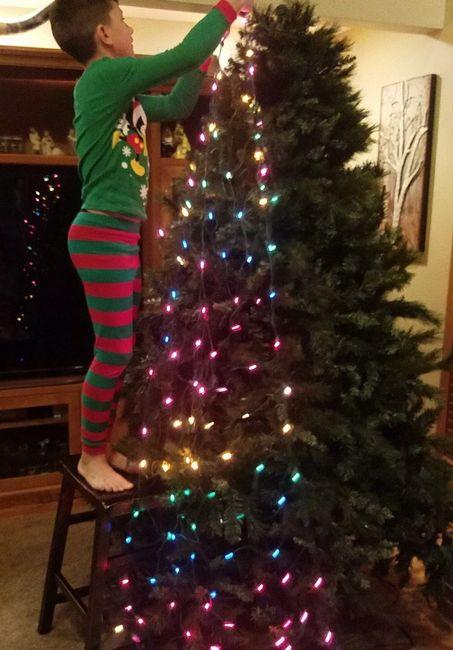 watch 54542 7b283 Christmas Tree Net Lights - Net Lights, Christmas Decorations