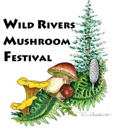 Mushroom Festival 2020.About The Festival Wild Rivers Mushroom Festival