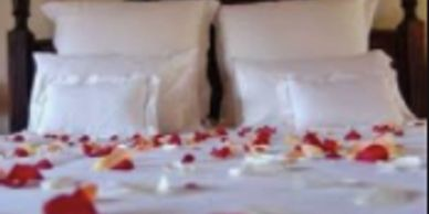 For an evening of romantic luxury, try our Enchanted Evening package. We set the mood with two dozen