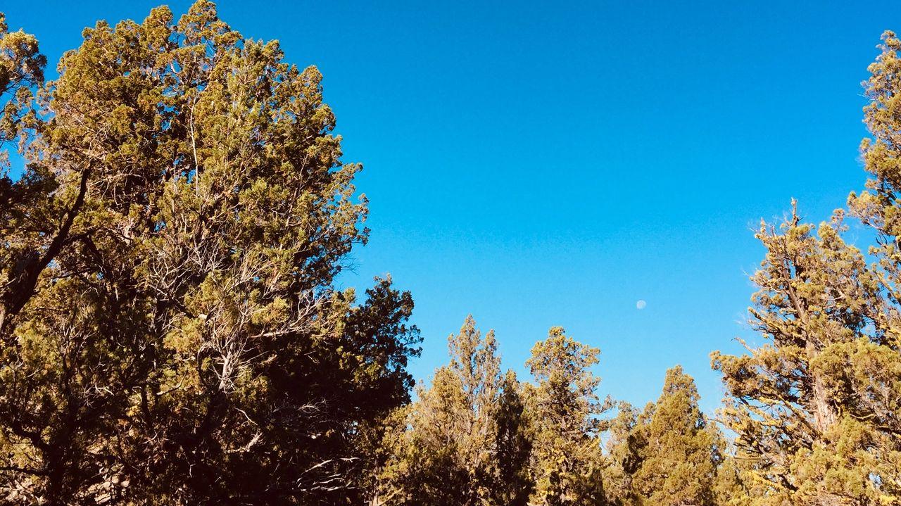 Moonrise in Eastern Oregon